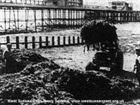 Clearing seaweed 1961 mark